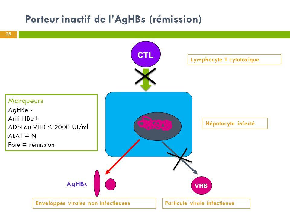 Porteur inactif de l'AgHBs (rémission) 28 Hépatocyte infecté AgHBs Marqueurs AgHBe - Anti-HBe+ ADN du VHB < 2000 UI/ml ALAT = N Foie = rémission VHB L