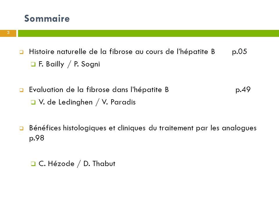 Sommaire 3  Histoire naturelle de la fibrose au cours de l'hépatite B p.05  F. Bailly / P. Sogni  Evaluation de la fibrose dans l'hépatite B p.49 