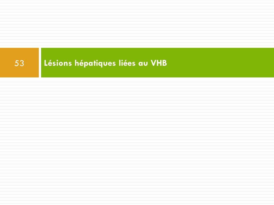 Lésions hépatiques liées au VHB 53