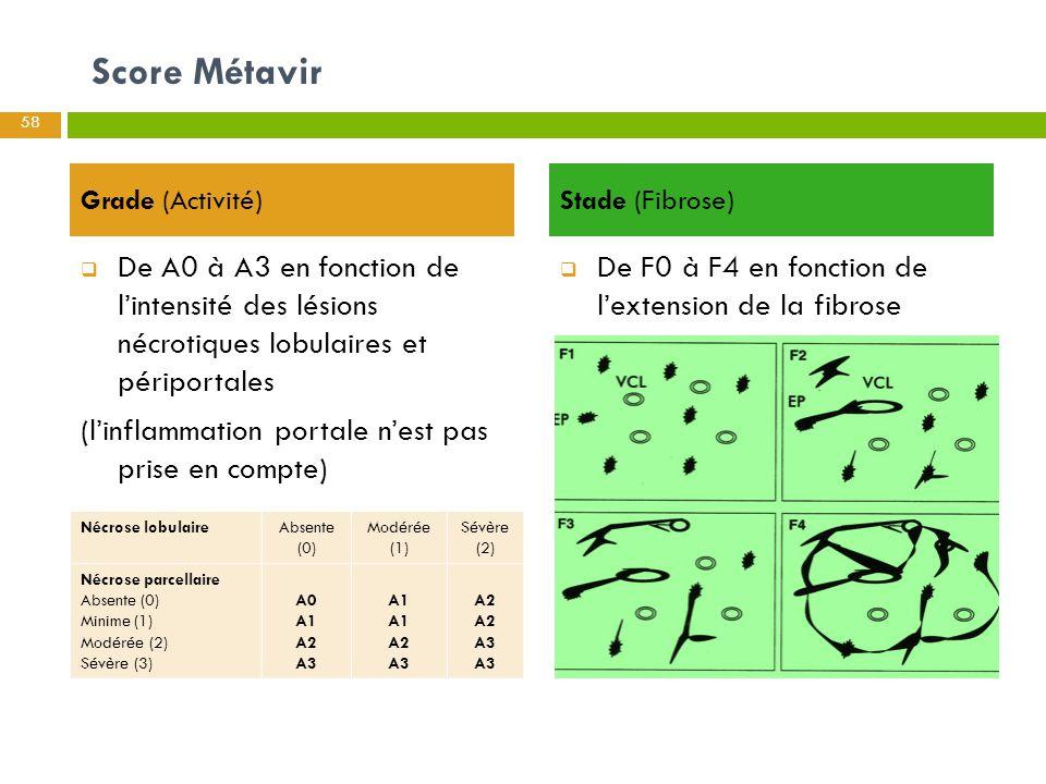 Score Métavir Grade (Activité)  De A0 à A3 en fonction de l'intensité des lésions nécrotiques lobulaires et périportales (l'inflammation portale n'es