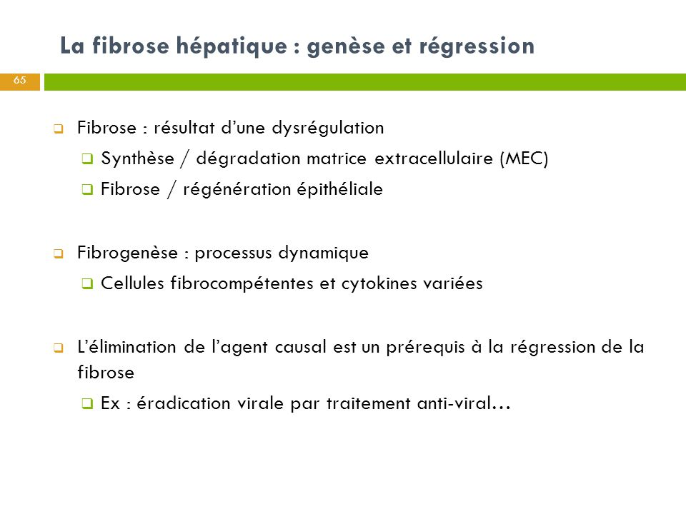 La fibrose hépatique : genèse et régression  Fibrose : résultat d'une dysrégulation  Synthèse / dégradation matrice extracellulaire (MEC)  Fibrose