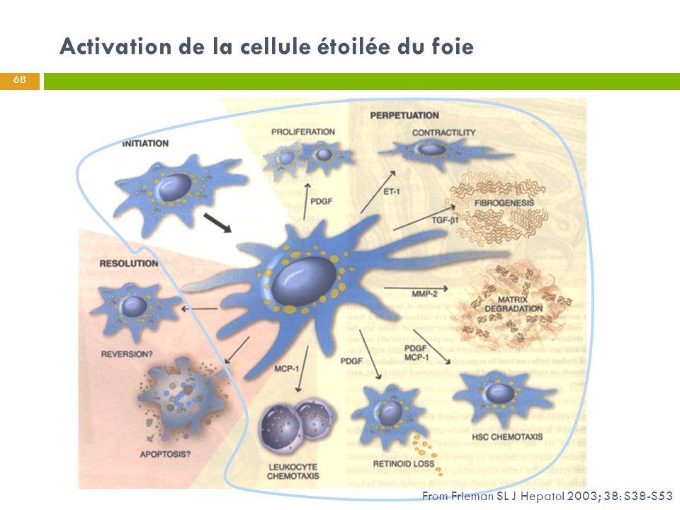 Activation de la cellule étoilée du foie 68 From Frieman SL J Hepatol 2003; 38: S38-S53