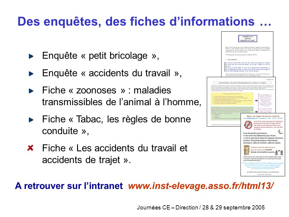 Journées CE – Direction / 28 & 29 septembre 2005 Enquête « petit bricolage », Enquête « accidents du travail », Fiche « zoonoses » : maladies transmis