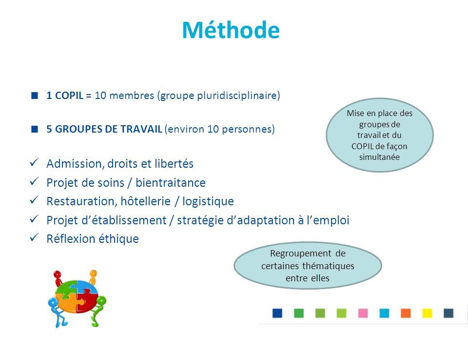 Méthode  1 COPIL = 10 membres (groupe pluridisciplinaire)  5 GROUPES DE TRAVAIL (environ 10 personnes) Admission, droits et libertés Projet de soins / bientraitance Restauration, hôtellerie / logistique Projet d'établissement / stratégie d'adaptation à l'emploi Réflexion éthique Mise en place des groupes de travail et du COPIL de façon simultanée Regroupement de certaines thématiques entre elles