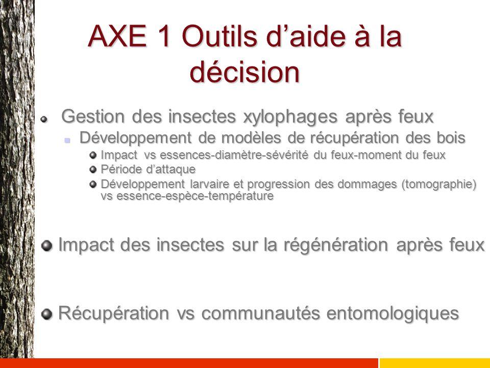 AXE 1 Outils d'aide à la décision Gestion des insectes xylophages après feux Gestion des insectes xylophages après feux Développement de modèles de ré