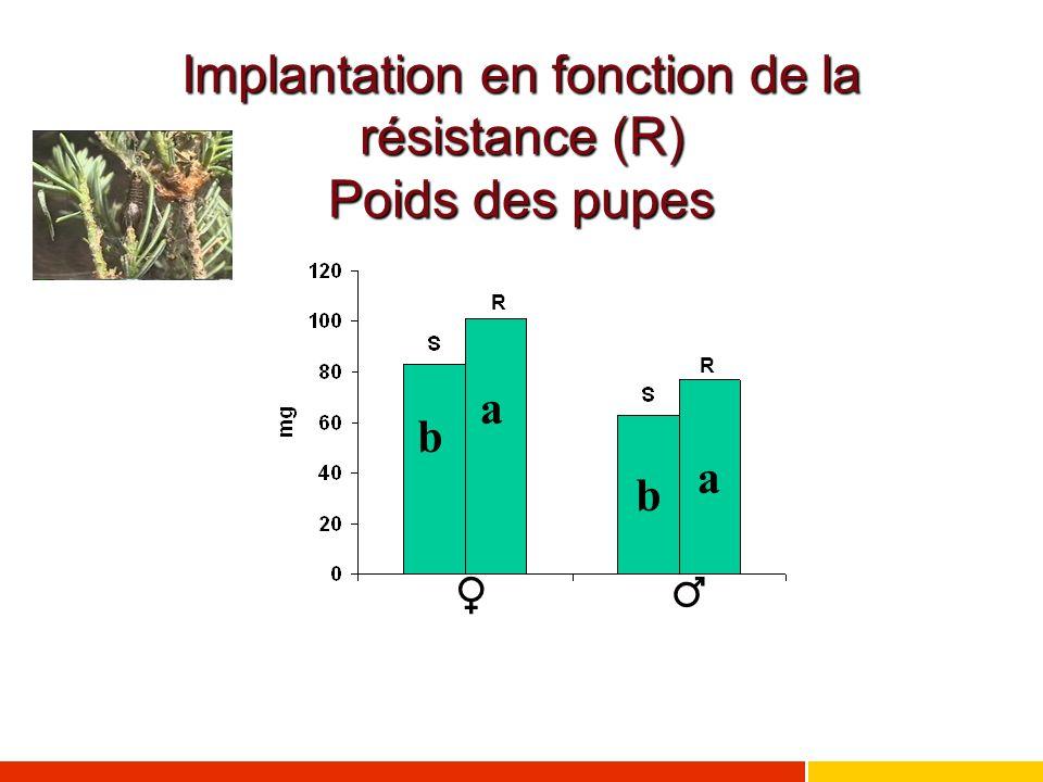 Implantation en fonction de la résistance (R) Poids des pupes ♂ ♀ a a b b R R