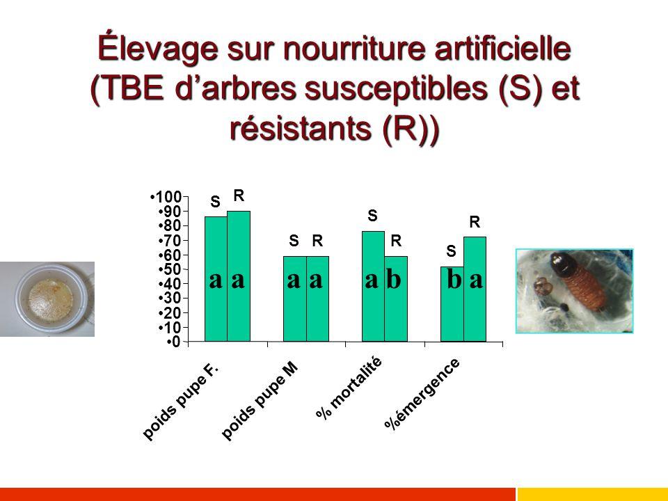 Élevage sur nourriture artificielle (TBE d'arbres susceptibles (S) et résistants (R)) aaaaabbb S S S S R RR R 0 10 20 30 40 50 60 70 80 90 100 poids p
