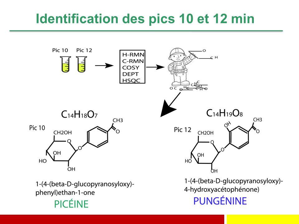 Identification des pics 10 et 12 min