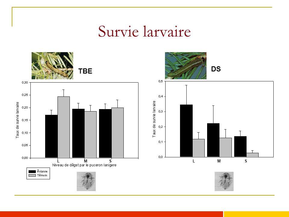 Survie larvaire TBE DS LLMSMS