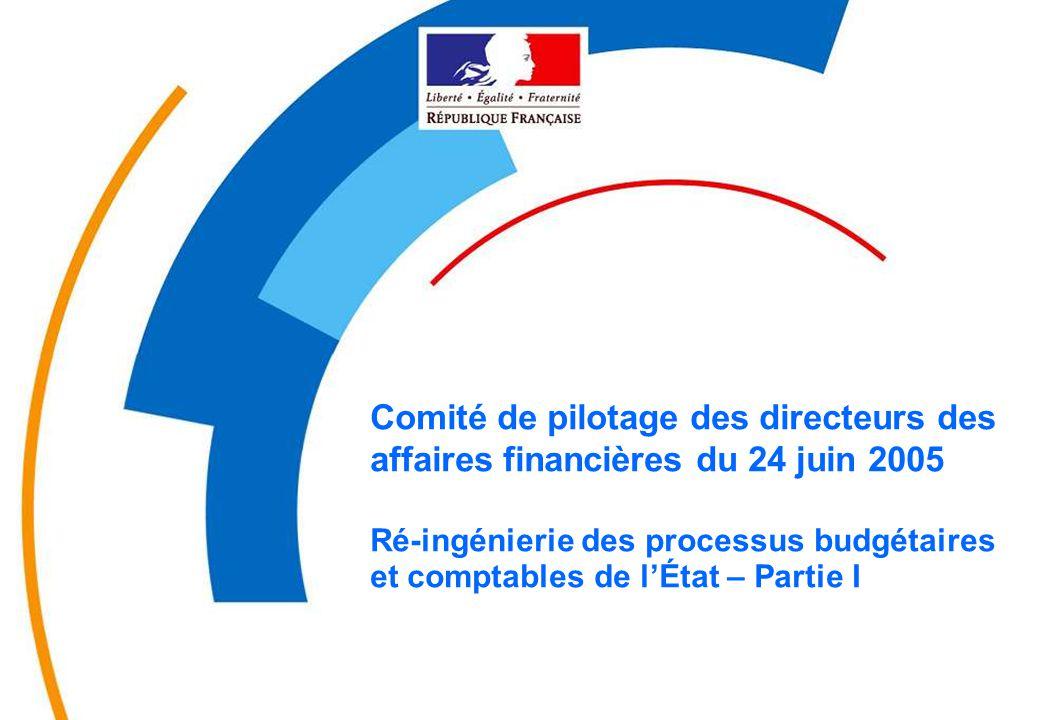 -0- MINEFI-DRBComité de pilotage des DAF du 24 juin 2005 Comité de pilotage des directeurs des affaires financières du 24 juin 2005 Ré-ingénierie des processus budgétaires et comptables de l'État – Partie I