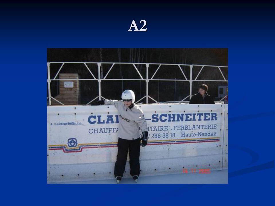 B1: Comment décrire quelqu'un Étape 4: La systématisation: devinette: quelqu'un dans la classe, une star/feuille avec nom sur le front les autres posent des questions, sur le front/les compliments affichés au dos, états, mimétats et carrefour d'états.