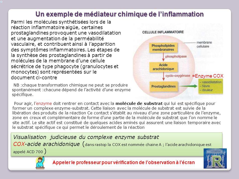Un exemple de médiateur chimique de l'inflammation Parmi les molécules synthétisées lors de la réaction inflammatoire aigüe, certaines prostaglandines