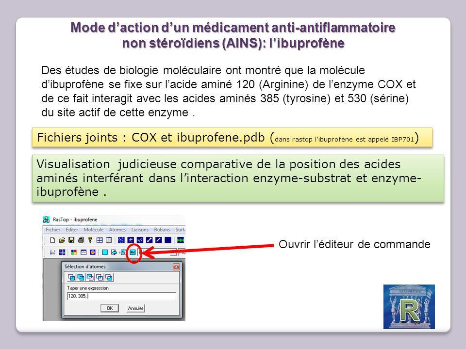 Mode d'action d'un médicament anti-antiflammatoire non stéroïdiens (AINS): l'ibuprofène Des études de biologie moléculaire ont montré que la molécule