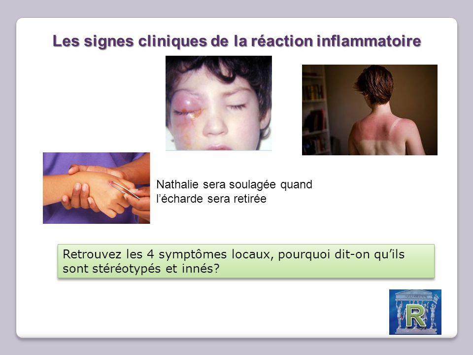 Les acteurs cellulaires de la réaction inflammatoire Fiche d'analyse sanguine D'une personne 3 jours après la blessure suivante