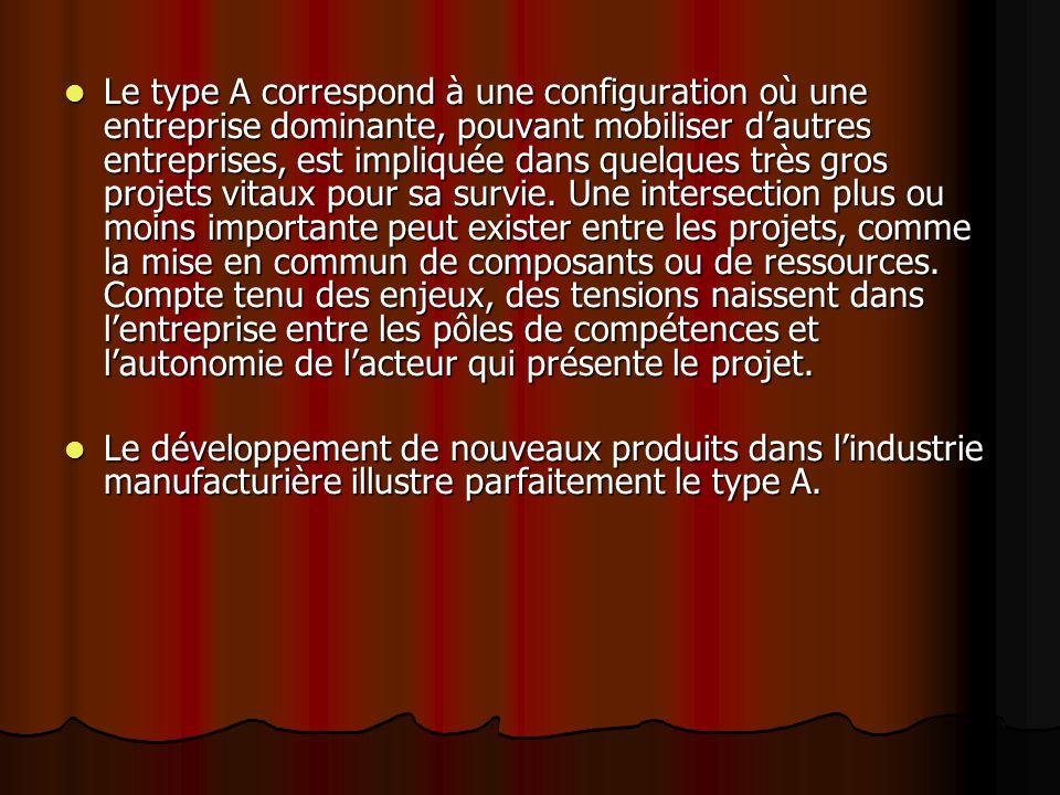 Le type A correspond à une configuration où une entreprise dominante, pouvant mobiliser d'autres entreprises, est impliquée dans quelques très gros pr
