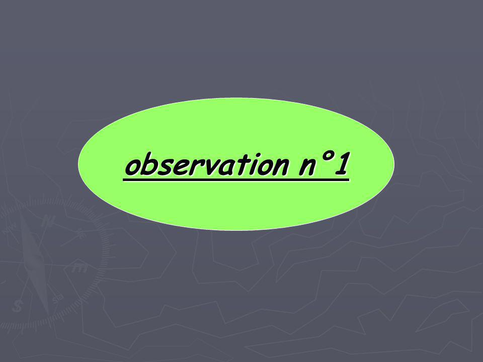 observation n°3