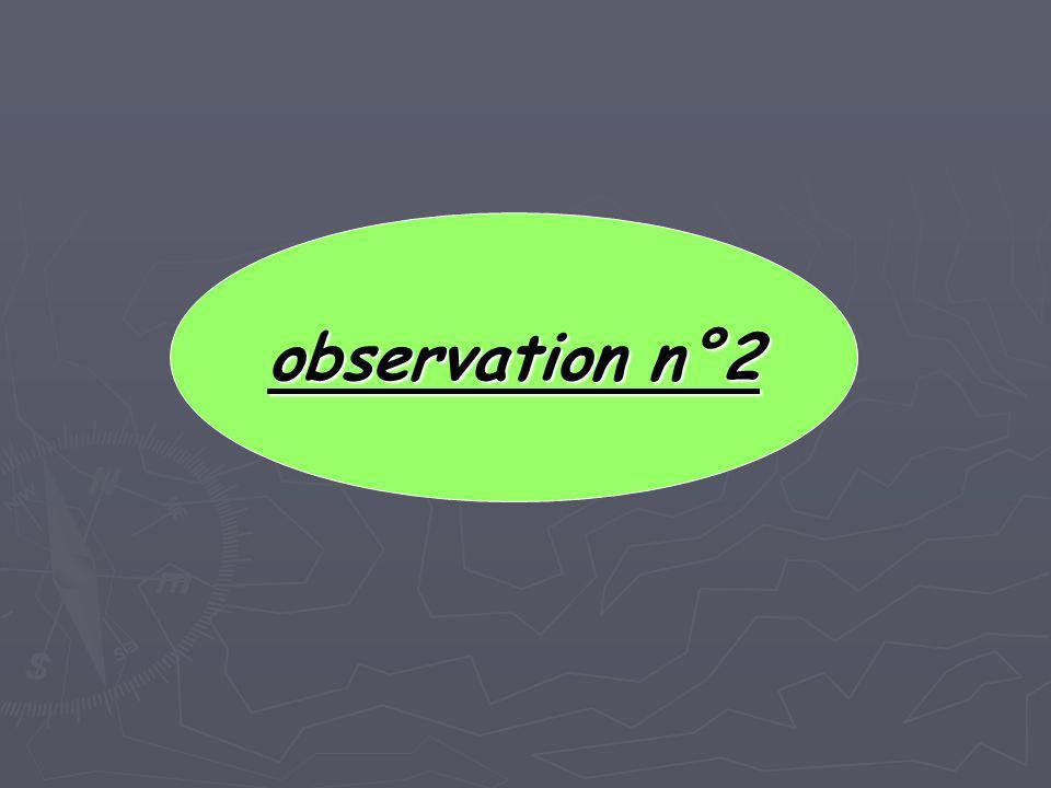 observation n°2