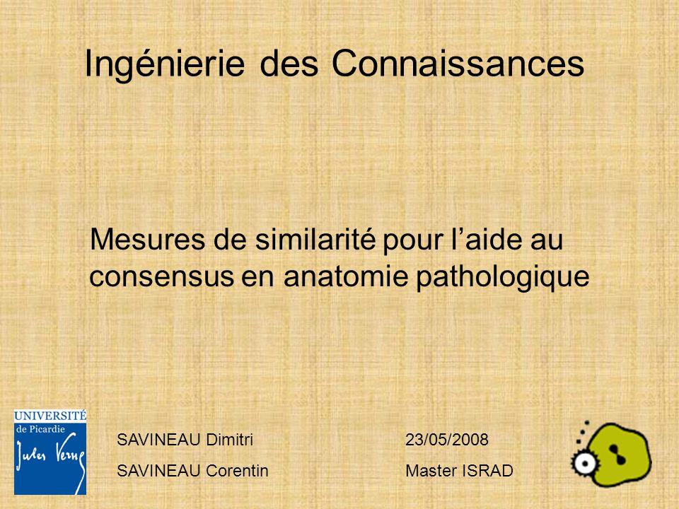 Ingénierie des Connaissances Mesures de similarité pour l'aide au consensus en anatomie pathologique SAVINEAU Dimitri SAVINEAU Corentin 23/05/2008 Mas