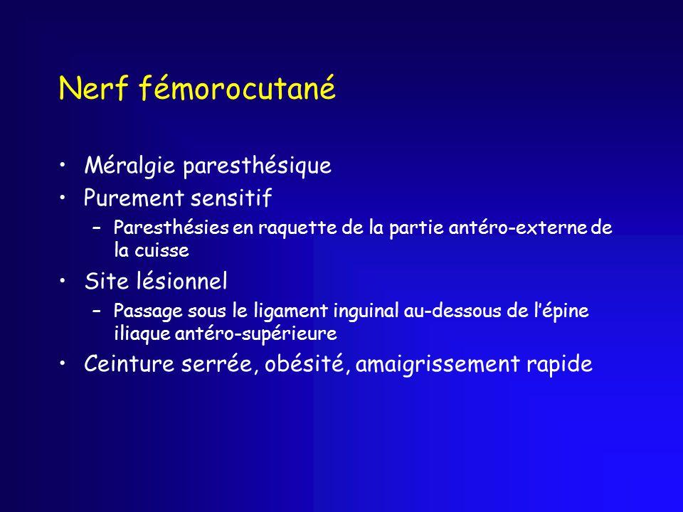Nerf fémorocutané Méralgie paresthésique Purement sensitif –Paresthésies en raquette de la partie antéro-externe de la cuisse Site lésionnel –Passage