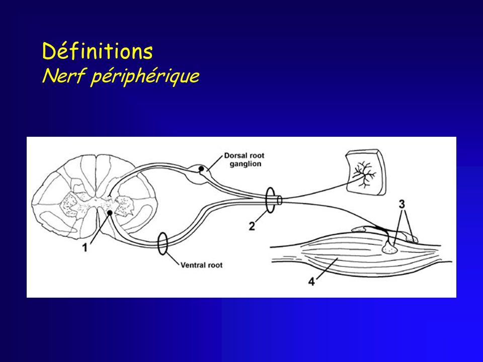 Définitions Nerf périphérique