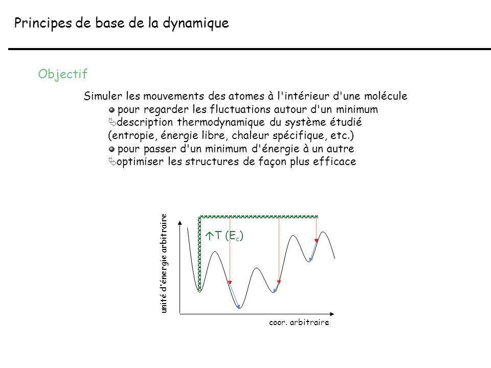 Principes de base de la dynamique Objectif Simuler les mouvements des atomes à l'intérieur d'une molécule pour regarder les fluctuations autour d'un m
