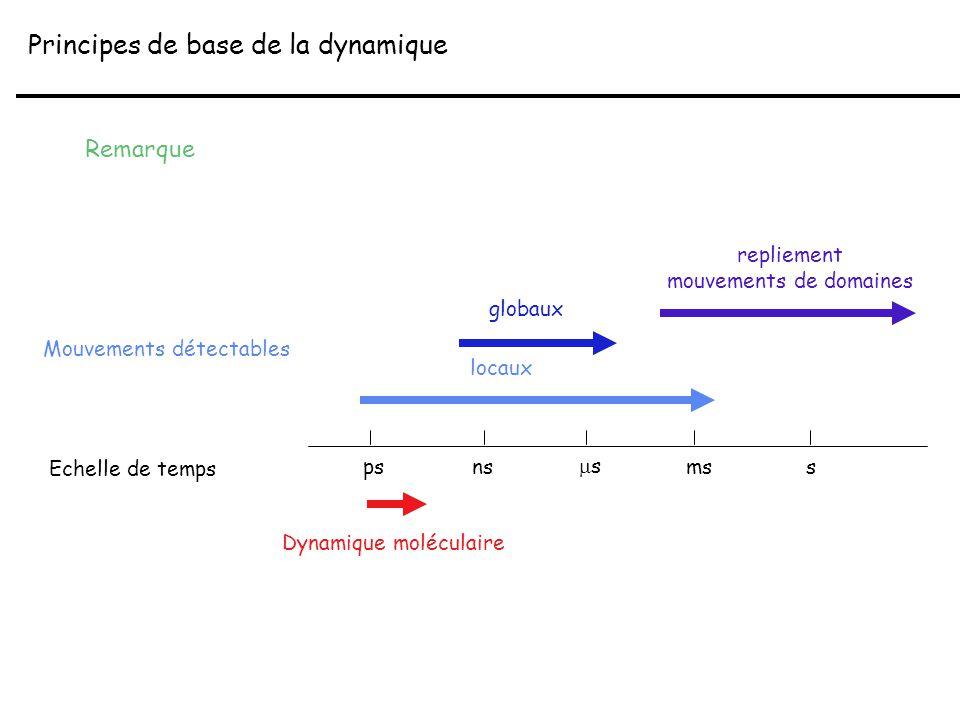 Principes de base de la dynamique Remarque psns ss mss Echelle de temps Mouvements détectables locaux Dynamique moléculaire globaux repliement mouve
