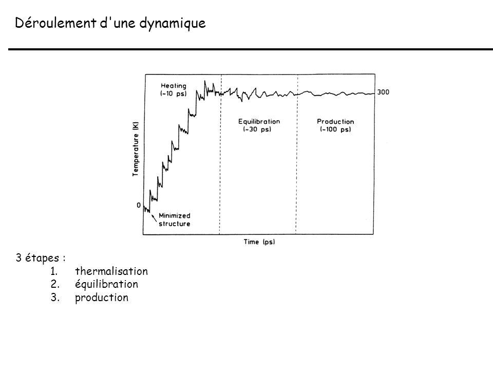 Déroulement d'une dynamique 3 étapes : 1.thermalisation 2.équilibration 3.production