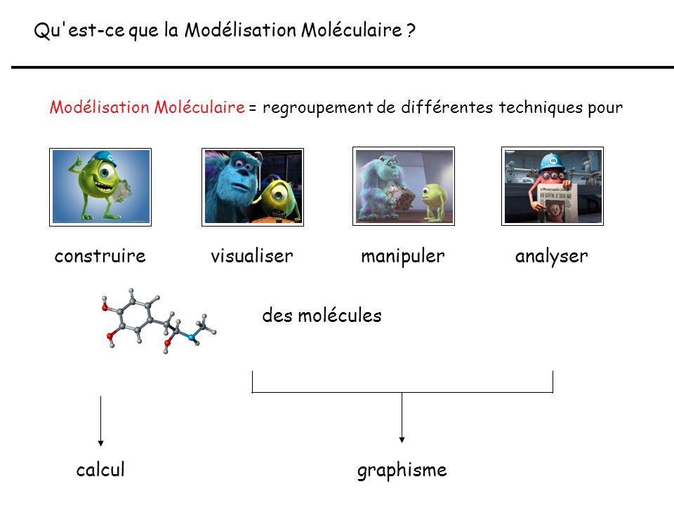 Modélisation Moléculaire = regroupement de différentes techniques pour Qu'est-ce que la Modélisation Moléculaire ? calcul graphisme construirevisualis