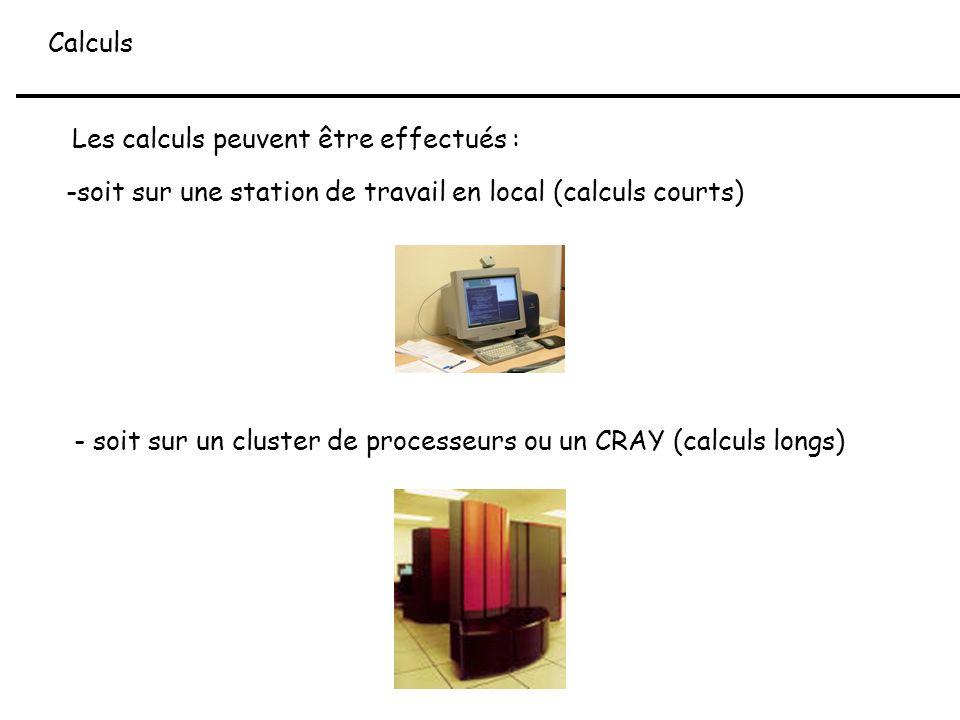Calculs Les calculs peuvent être effectués : -soit sur une station de travail en local (calculs courts) - soit sur un cluster de processeurs ou un CRA