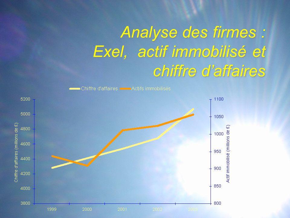 Analyse des firmes : Exel, actif immobilisé et chiffre d'affaires