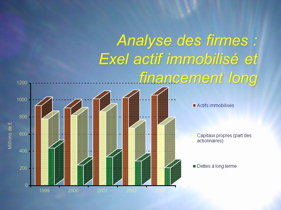 Analyse des firmes : Exel actif immobilisé et financement long