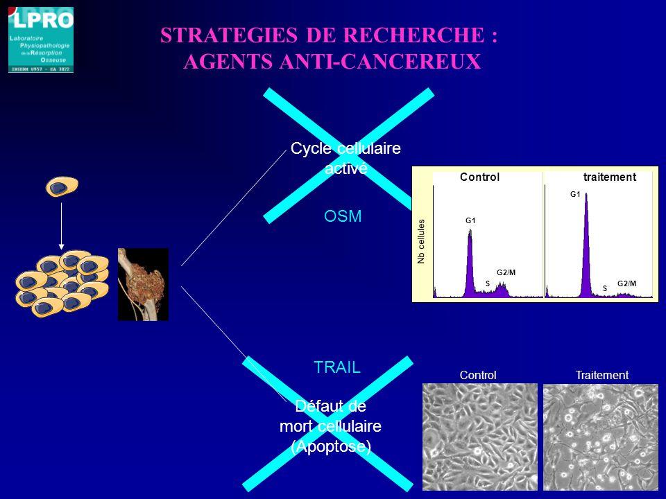 Défaut de mort cellulaire (Apoptose) Cycle cellulaire activé STRATEGIES DE RECHERCHE : AGENTS ANTI-CANCEREUX Control traitement G1 S G2/M G1 S G2/M Nb cellules ControlTraitement OSM TRAIL