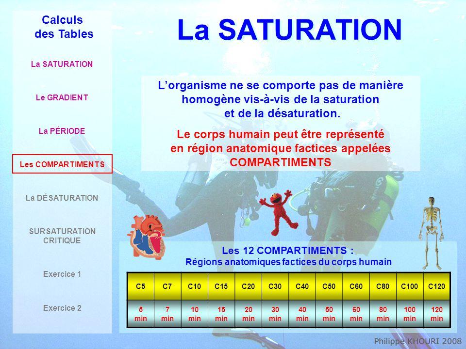 La SATURATION Calculs des Tables La SATURATION Le GRADIENT La PÉRIODE Les COMPARTIMENTS La DÉSATURATION SURSATURATION CRITIQUE Exercice 1 Exercice 2 40m 30min C5 C40 4h C120 12h 0,8 b TN 2 2,4 b 4 b