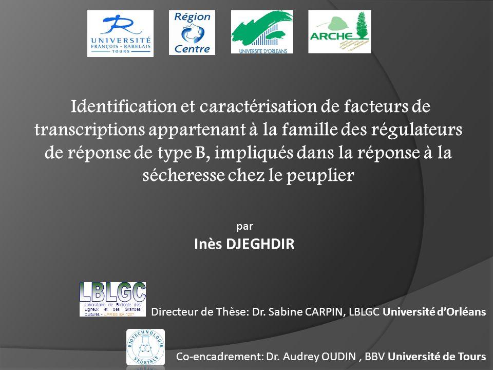 Directeur de Thèse: Dr. Sabine CARPIN, LBLGC Université d'Orléans Co-encadrement: Dr. Audrey OUDIN, BBV Université de Tours Identification et caractér