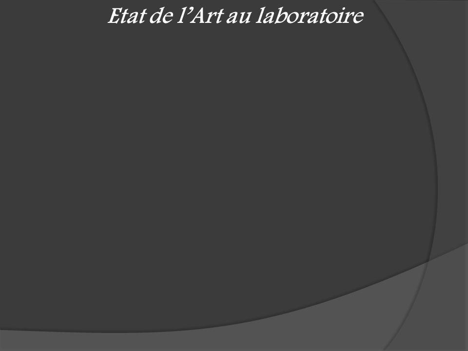 Etat de l'Art au laboratoire
