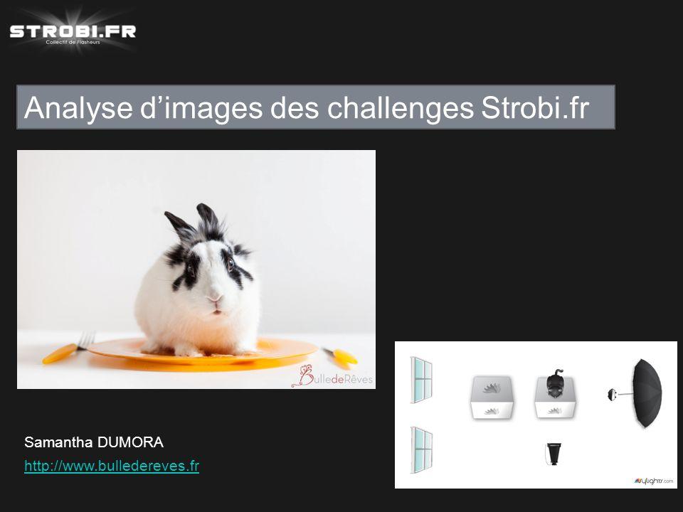 Analyse d'images des challenges Strobi.fr Samantha DUMORA http://www.bulledereves.fr