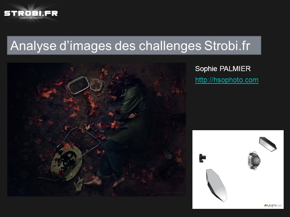 Analyse d'images des challenges Strobi.fr Sophie PALMIER http://hsophoto.com