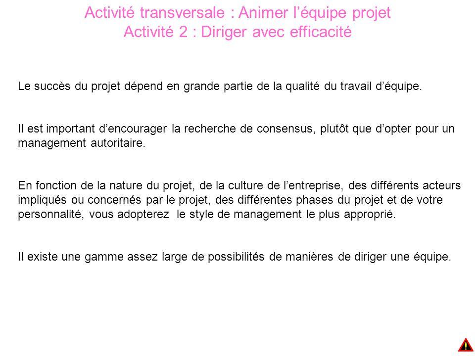 Activité transversale : Animer l'équipe projet Activité 2 : Diriger avec efficacité Le succès du projet dépend en grande partie de la qualité du travail d'équipe.