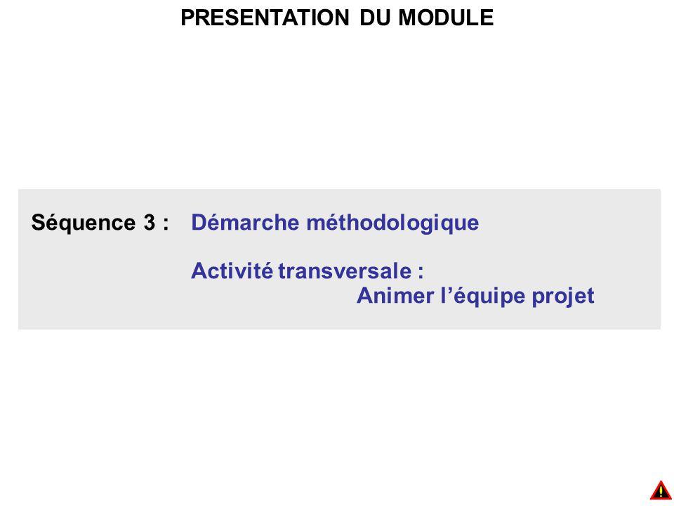 PRESENTATION DU MODULE Séquence 3 : Démarche méthodologique Activité transversale : Animer l'équipe projet