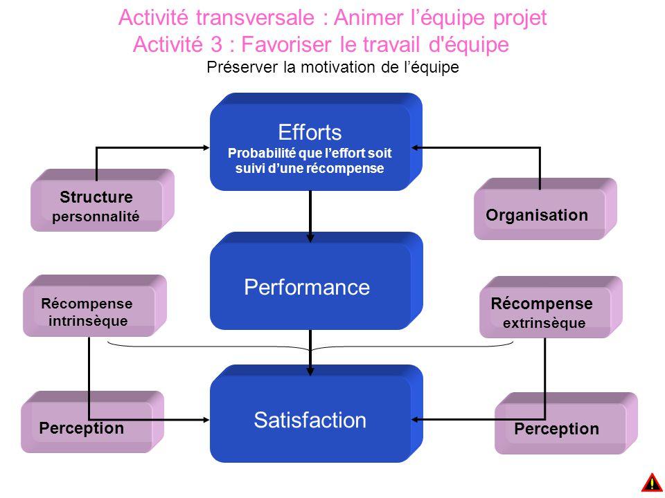 Activité transversale : Animer l'équipe projet Activité 3 : Favoriser le travail d équipe Préserver la motivation de l'équipe Efforts Probabilité que l'effort soit suivi d'une récompense Structure personnalité Récompense intrinsèque Organisation Perception Récompense extrinsèque Performance Satisfaction Perception