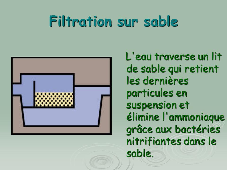 Filtration sur sable L'eau traverse un lit de sable qui retient les dernières particules en suspension et élimine l'ammoniaque grâce aux bactéries nit