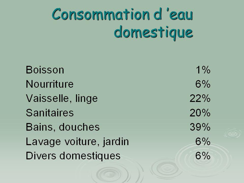Consommation d 'eau domestique
