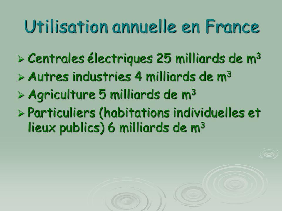 Utilisation annuelle en France  Centrales électriques 25 milliards de m 3  Autres industries 4 milliards de m 3  Agriculture 5 milliards de m 3  P