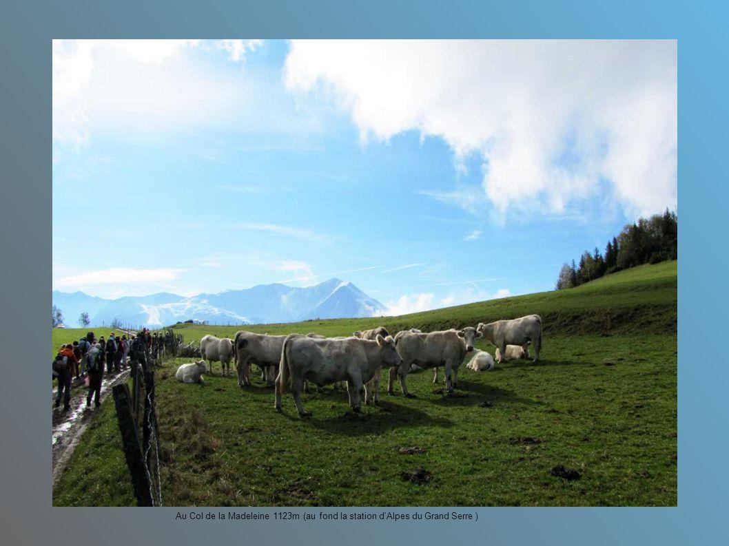 Au Col de la Madeleine 1123m (au fond la station d Alpes du Grand Serre )