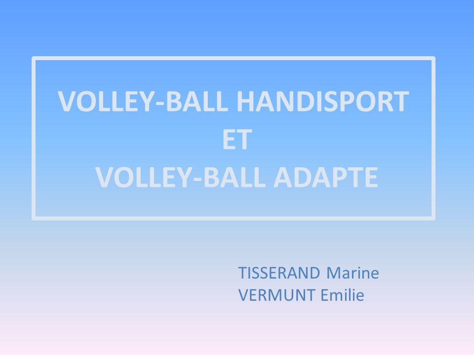 SOMMAIRE Introduction I.Le volley-ball Handisport 1.Règlement 2.Classification 3.Différences avec le volley-ball valide II.Le volley-ball adapté 1.Volley-ball assis 2.Volley-ball debout Conclusion