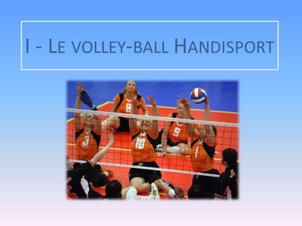 Le volley-ball assis a été introduit comme sport paralympique aux Jeux paralympiques d'Arnhem en 1980, avec la participation de sept équipes.