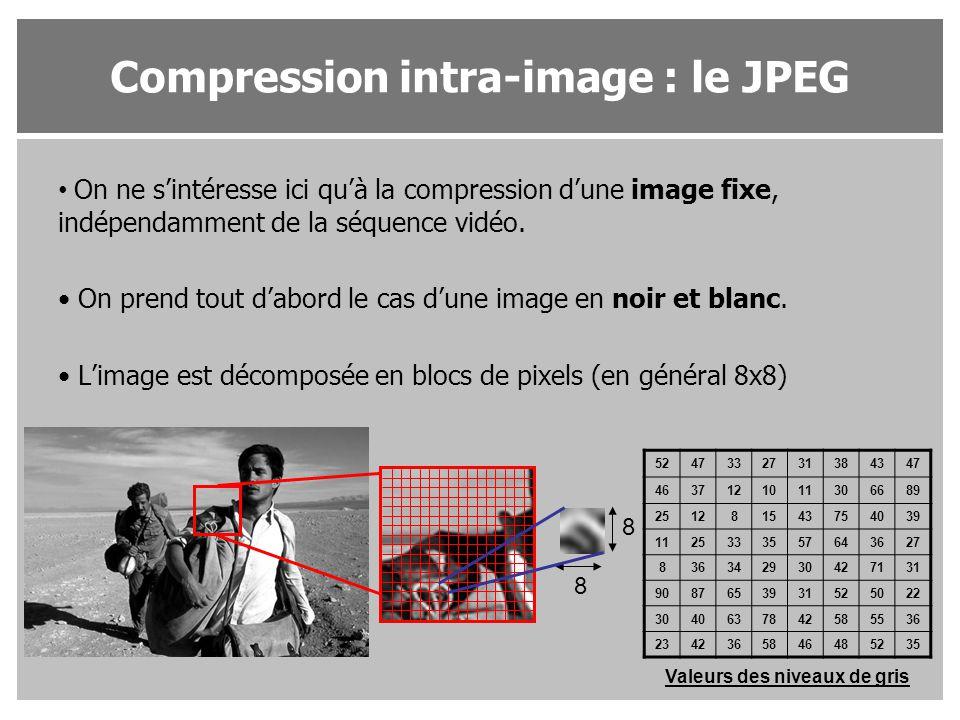 On ne s'intéresse ici qu'à la compression d'une image fixe, indépendamment de la séquence vidéo. On prend tout d'abord le cas d'une image en noir et b