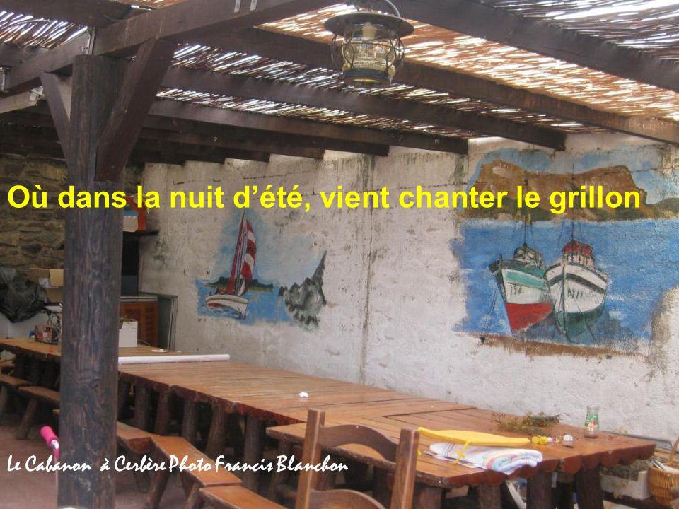 Je suis ce cabanon, cette simple chaumine Casot de vignes à Cerbère Photo Francis Blanchon