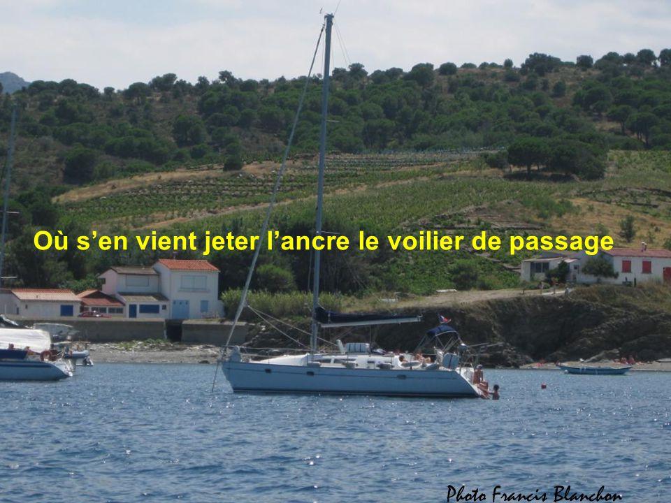 Je suis la crique bleue accueillante et sauvage Blottie au Cap Béar, dans son écrin nacré,