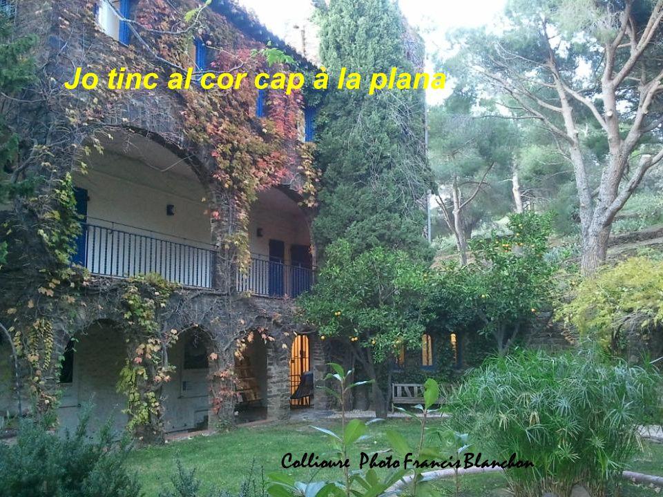 Jo tinc al cor cap à la plana Collioure Photo Francis Blanchon